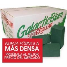 Caja de esponjas para flor natural - GALACTICBLUM EXCELENT (20 unds.)