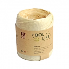 Rafia Biodegradable